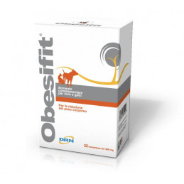 DRN obesifit 32 cpr.