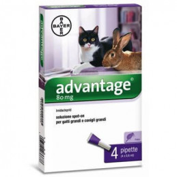 Advantage Spot-On 80 per gatti e conigli di peso pari o superiore a 4 kg -