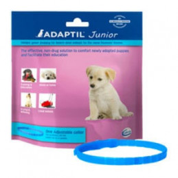 Adaptil junior collare -