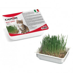 Camon - Grass for Cat