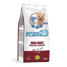 Forza10 Cane Adult Mini Maintenance Agnello Riso 2 kg -