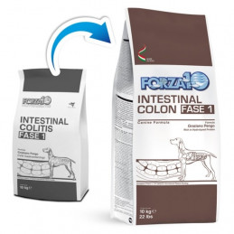 Forza10 Cane Active Intestinal Colon Fase 1(formato da 4 kg) -