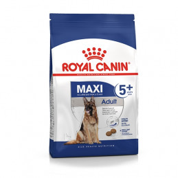ROYAL CANIN Maxi Adult 5+ 4 kg. -